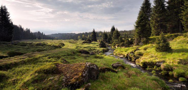 paisagem rural no interior da Boemia na República Tcheca: rio passando no meio da floresta