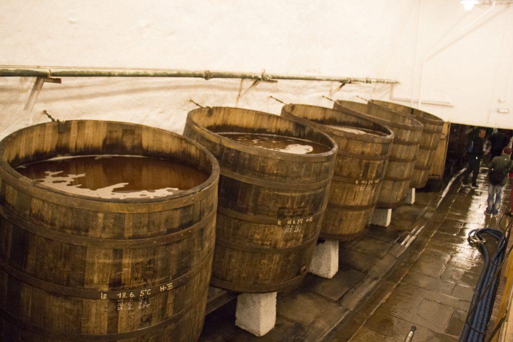 barris de madeira onde a cerveja está sendo preparada