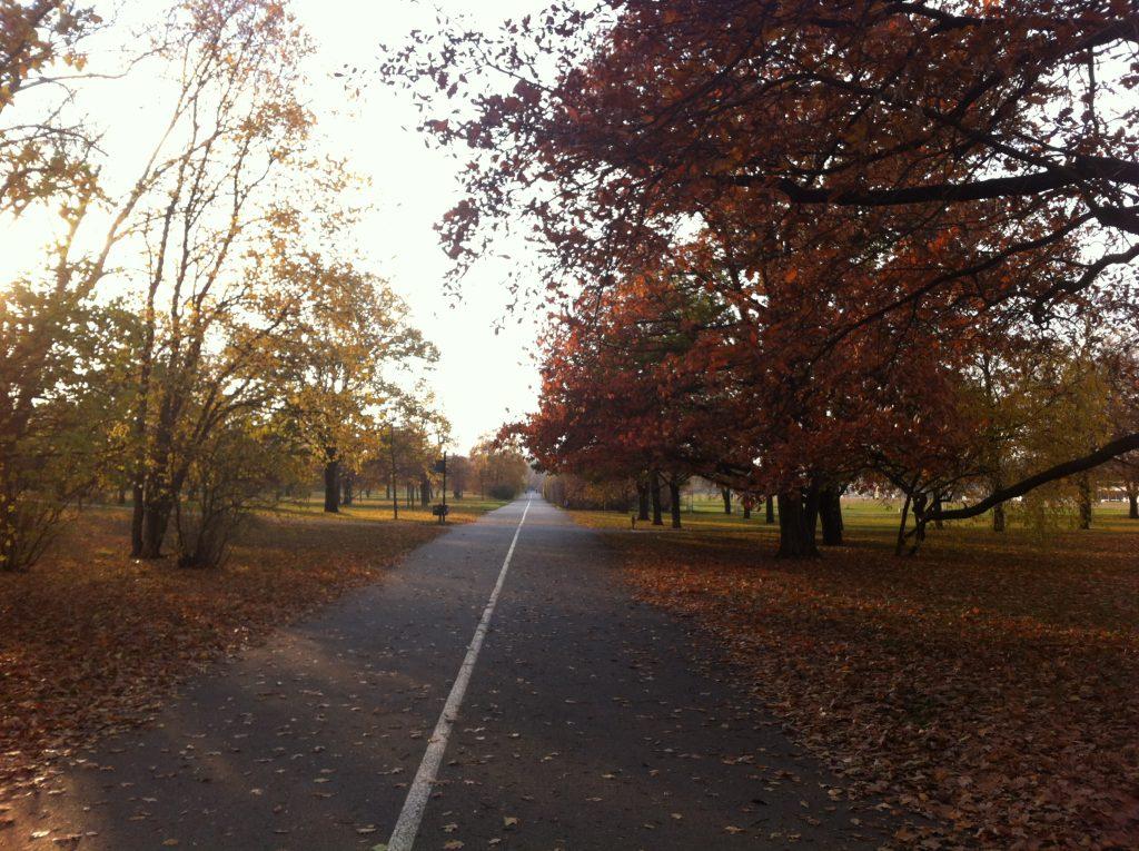 Ruas para caminhar no Parque Letná em um fim de tarde de outono em Praga. As folhas das árvores começam a descolorir e ficar com tons de amarelo e laranja.