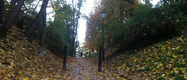 Caminho, para fazer caminhadas em um parque na cidade de Praga, coberto de folhas que caem das árvores no outono